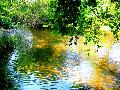 sightseeing-veleka_river_6.jpg